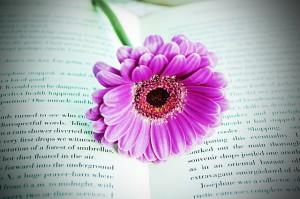 book-163774_640